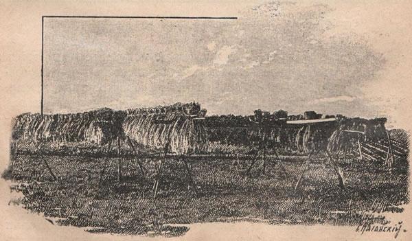 Рис. 111. Просушка сноповъ въ пріозерной области.