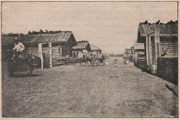 Рис. 149. Бѣлорусская деревня; постройки бѣдныя, помѣщеній для скота почти нѣтъ