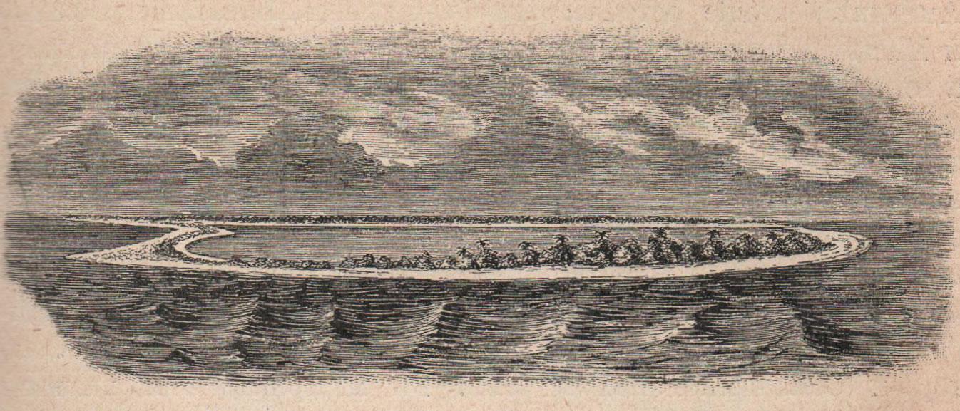 Рис. 60. Коралловый островъ формы кольца—атоллъ, внутри кольца водный бассейнъ-лагуна (изъ острововъ Микронезіи).